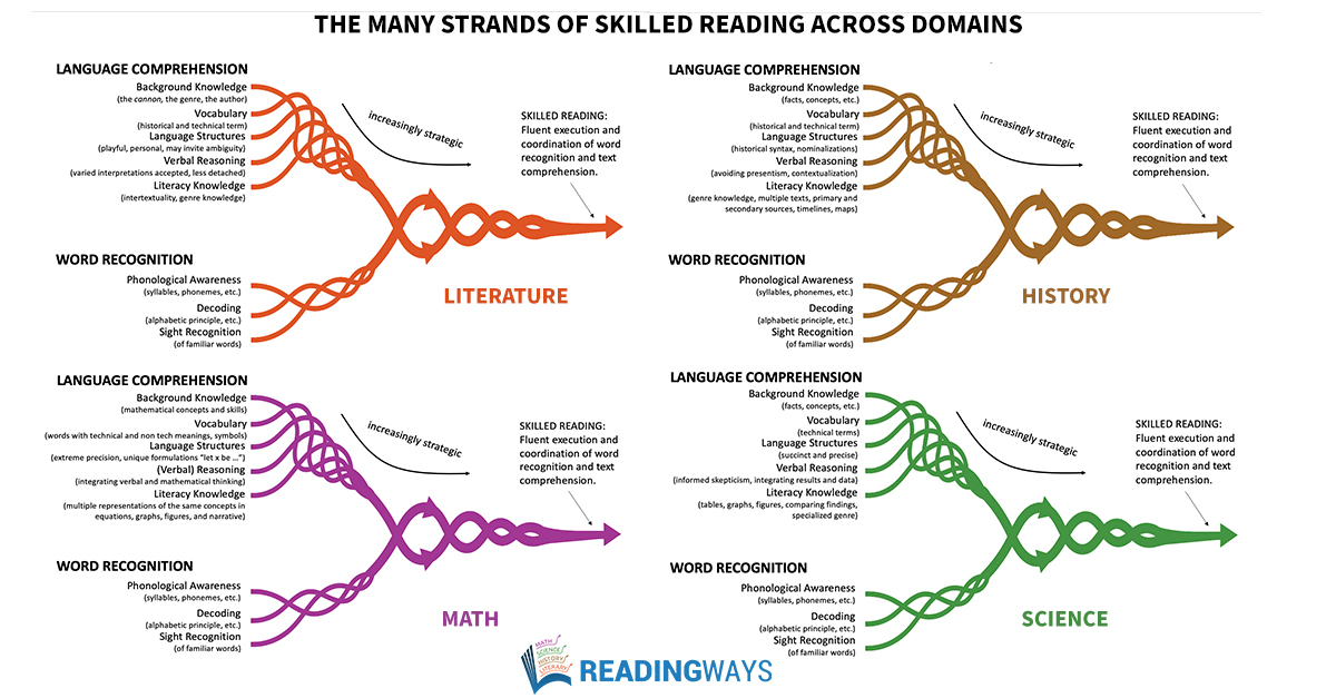 the many strands of skilled reading accross the doamins-graph.jpg